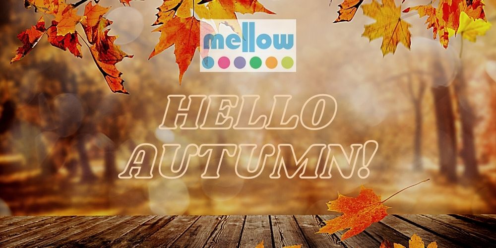 mellow-skincare-does-your-skin-change-with-seasons